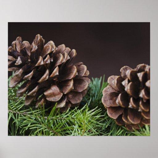 Close-up of pine cone print