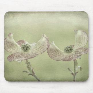 Close-up of Pink Dogwood Blossoms | Seabeck, WA Mouse Pad