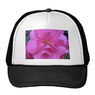 Close up of Pink Flower Hats