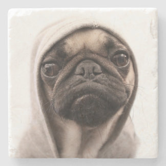Close up of pug wearing hoodie. stone coaster