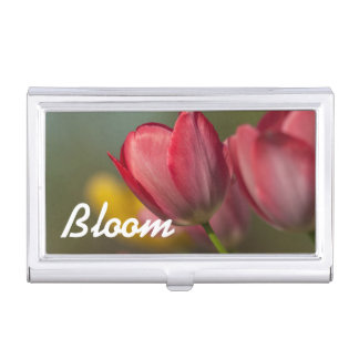 Close-up of red and yellow tulips in garden business card holders
