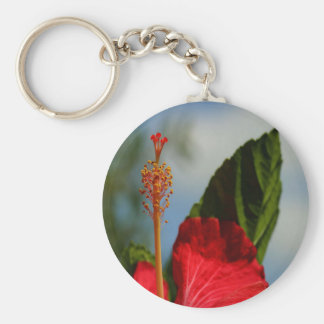 Close Up of Red Hibiscus Stamen and Pollen Key Ring