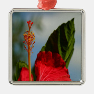 Close Up of Red Hibiscus Stamen and Pollen Metal Ornament