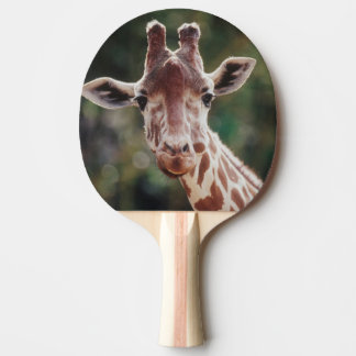 Close up of Reticulated Giraffe Ping Pong Paddle