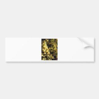 Close-up of ripe grapes in box bumper sticker