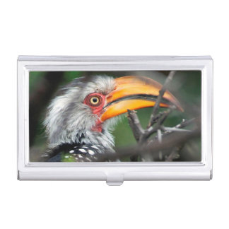 Close-Up Of Southern Yellow-Billed Hornbill Business Card Holder