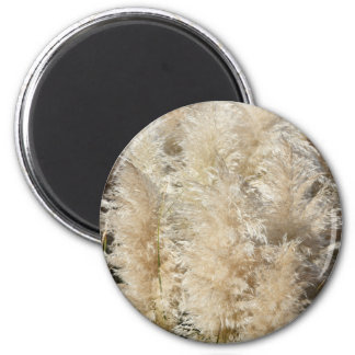 Close-Up of Tall Pampas Grass Plumes Magnet