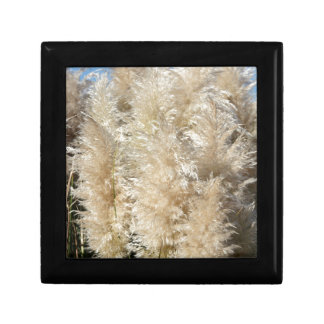 Close-Up of Tall Pampas Grass Plumes Small Square Gift Box