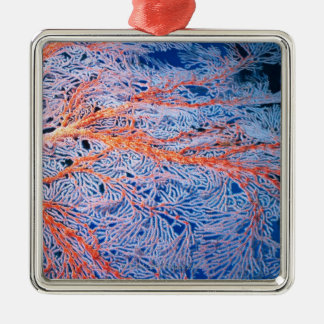 Close up of the coral, Okinawa, Japan Metal Ornament