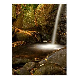 Close Up of Trap Falls in Autumn Postcard