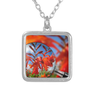 Close up of vibrant Orange flower in field with bl Square Pendant Necklace