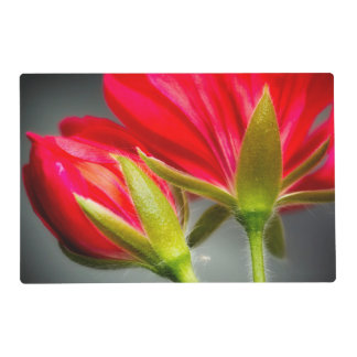 Close-up of vining geranium from back of flower laminated place mat