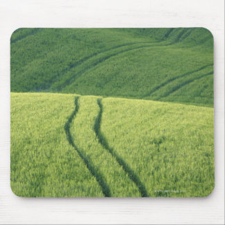 Close up of Wheat Field with Tire Tracks, Mouse Pads