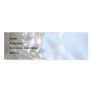 Close up Photo. Picture of a Seashell. Pack Of Skinny Business Cards