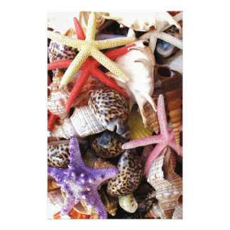 Close Up Picture of Sea Shell ans Starfish Photo Custom Stationery