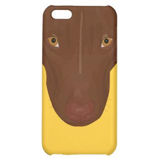 Close Up Portrait of Pit Bull - Digital Art Case For iPhone 5C