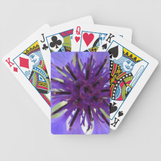 Close up Purple Bachelor Button Deck Of Cards