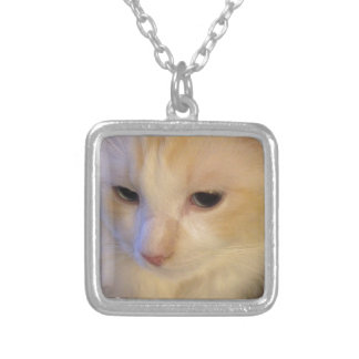 Close Up Red Point Ragdoll Cat Silver Plated Necklace