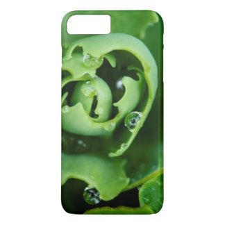 Close-up, succulent plant with water droplets iPhone 7 plus case