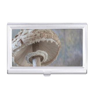 Close-Up Underside Of Mushroom Business Card Case