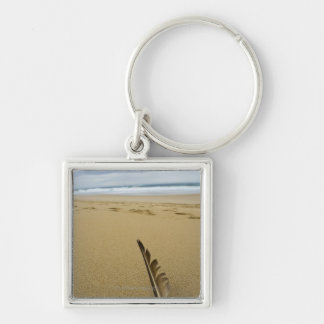 Close-up view of bird feather in beach sand, key ring