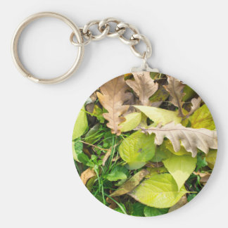 Close-up view on fallen autumn leaves basic round button key ring