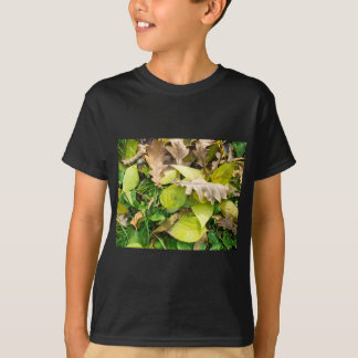 Close-up view on fallen autumn leaves T-Shirt