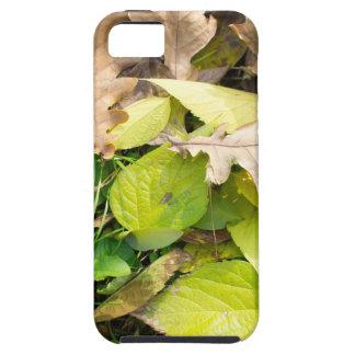 Close-up view on fallen autumn leaves tough iPhone 5 case