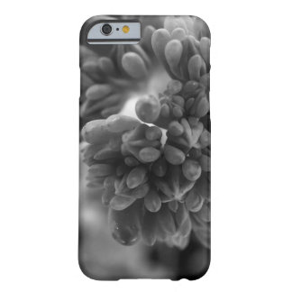 CloseCactus Barely There iPhone 6 Case