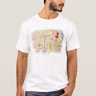 closed 151 maps maps map pins T-Shirt