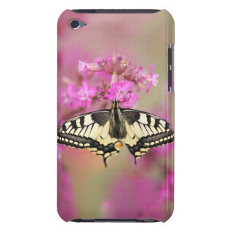 Closeup dovetail butterfly on lilac flower barely there iPod covers