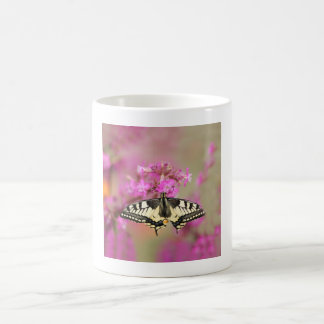 Closeup dovetail butterfly on lilac flower coffee mug