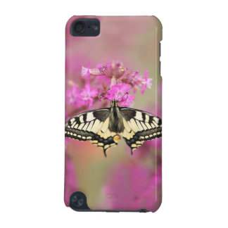 Closeup dovetail butterfly on lilac flower iPod touch (5th generation) case