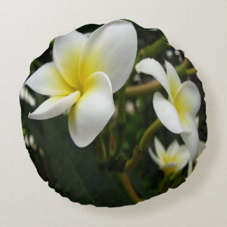 Closeup Frangipani with Natural Garden Background Round Cushion