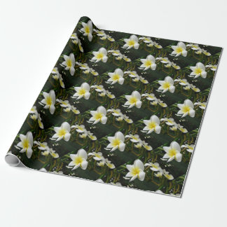 Closeup Frangipani with Natural Garden Background Wrapping Paper