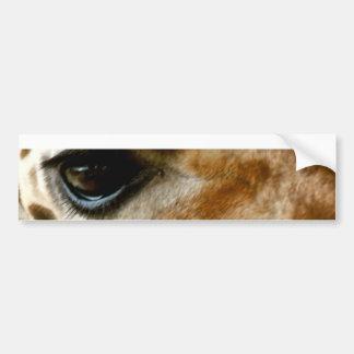 Closeup Giraffe Face Wild Animals Nature Photo Bumper Stickers