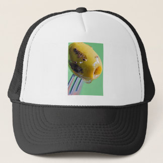 Closeup grilled olive on the fork trucker hat