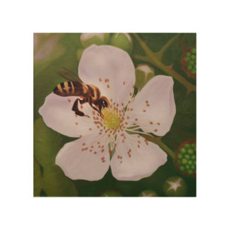 closeup illustration of bee on blackberry blossom wood canvases