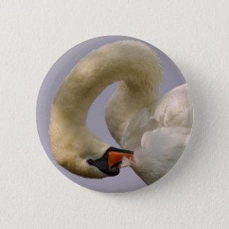 Closeup mute swan 6 cm round badge