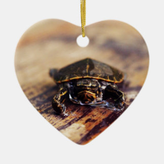 Closeup of a Baby Painted Turtle Ceramic Heart Decoration