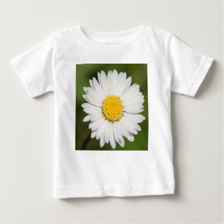 Closeup Of A Beautiful Yellow And Wild White Daisy Baby T-Shirt