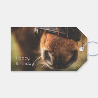 Closeup of a Cute Brown Horse Nose Birthday Gift Tags