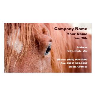 Closeup of Horse Business Card