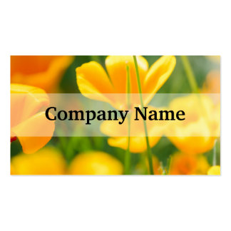 Closeup Of Orange Flowers, Nature Photography Pack Of Standard Business Cards
