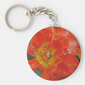 Closeup of orange tulip with droplets in spring basic round button key ring