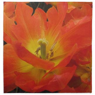 Closeup of orange tulips in spring napkin