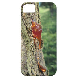 Closeup of pear tree excretion of gummy resin case for the iPhone 5