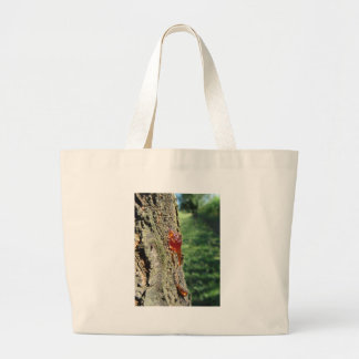 Closeup of pear tree excretion of gummy resin large tote bag