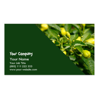 Closeup of peppers pack of standard business cards