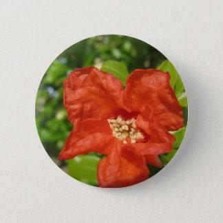 Closeup of red pomegranate flower 6 cm round badge